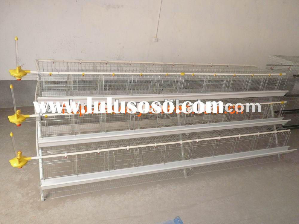 automatic poultry cages system