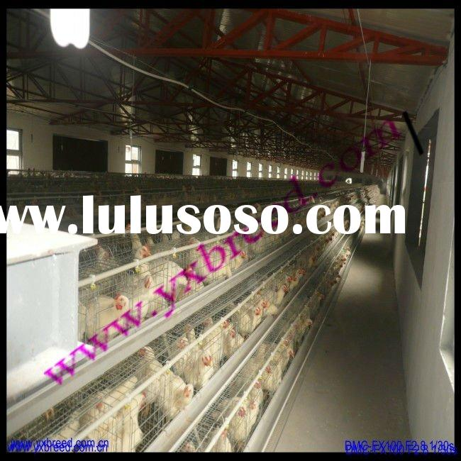 2012 new arrival layer poultry cages