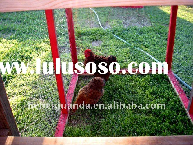 Chicken wire mesh / chicken coop hexagonal wire mesh / gabion cages / bird cage wire mesh