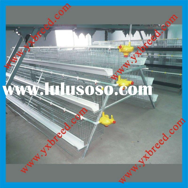 plump galvanization layer poultry cages