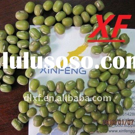 the mung bean production As the title implies, my aim of this project is producing, adopting and maintaining  mung bean production to eradicate the somalia's food.