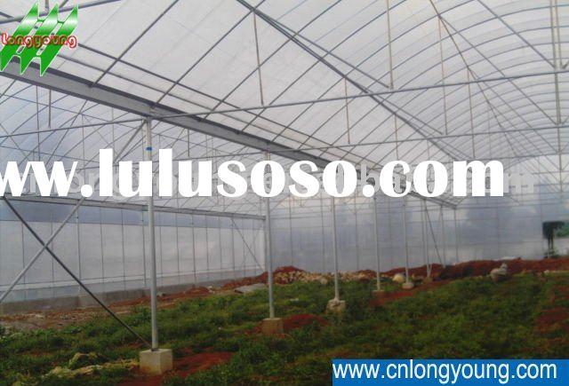 Metal Plastic Tunnel Green Houses Agriculture