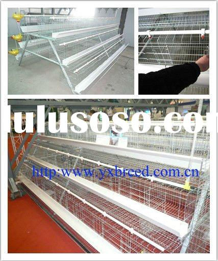 Nigeria official Poultry Cages with full accessories