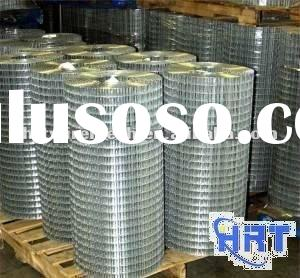 Electro Galvanized Welded Wire Mesh (factory)