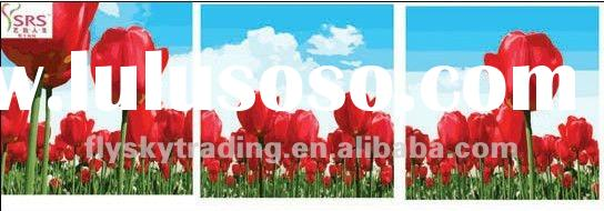 50*50*50cm abstract art colorful flower oil painting by numbers set tulips and blue sky for decorati