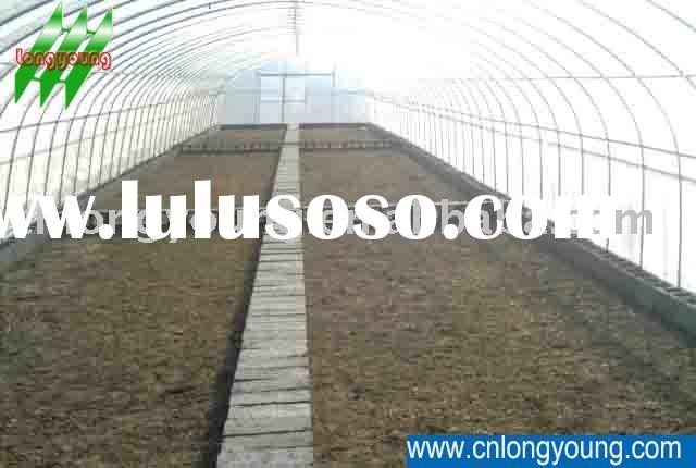 Agricultural Tunnel Greenhouse