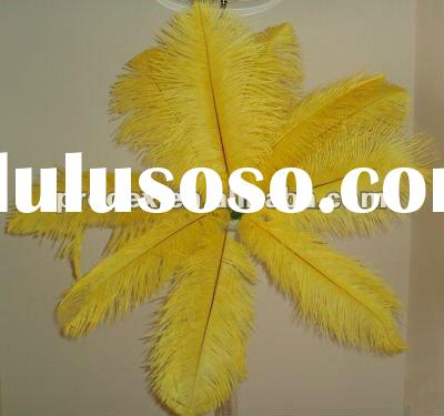 Ostrich feather, real ostrich feather, decorative ostrich feather, wedding feathers,