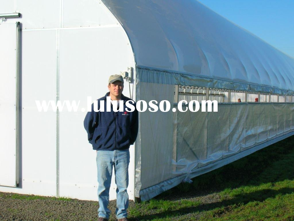 single span agricultural film plastic poly tunnel greenhouse