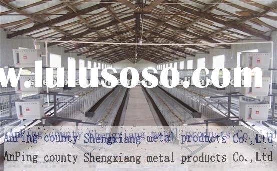 chicken cages for sale reduce epidemic disease low carbon steel wire layer chicken cages with Auto w