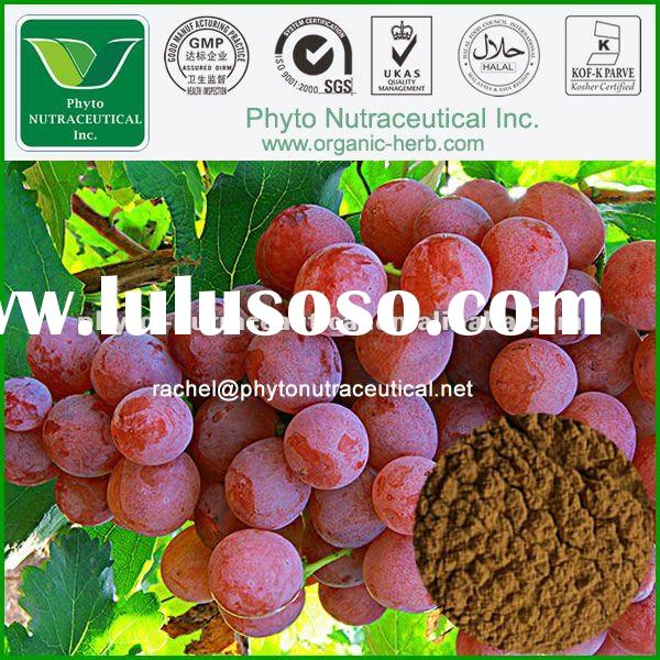 Food Products Grape Skin Extract flavor concentrate dried red grape skin powder