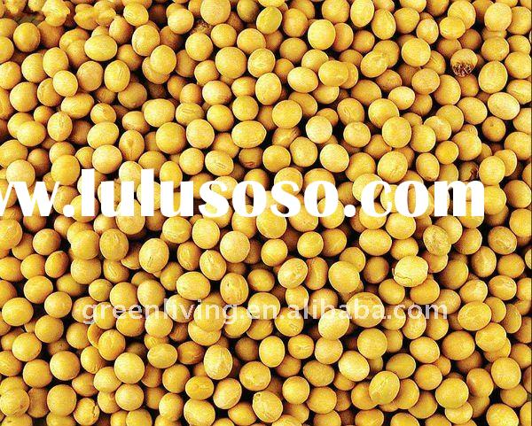 Soya Bean Drinks Supplier Soya Bean Drinks Supplier