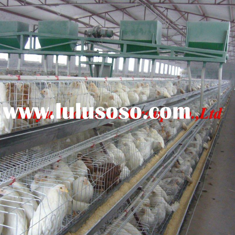 Poultry farm layer cage factory nigerian lagos office for birds in