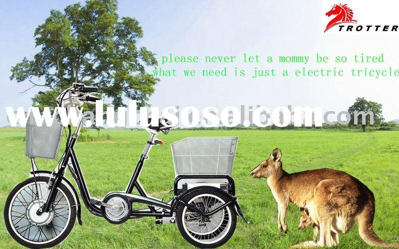 350W Three wheel Electric bicycle strong electric bike battery power electric bike Li-ion e-bike
