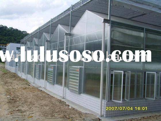 Agricultural Venlo Greenhouse/ PC sheet Greenhouse