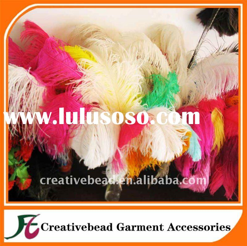colorful rich ostrich feather decorative feathers