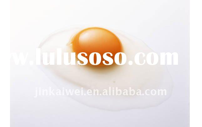 egg yolk lecithin powder