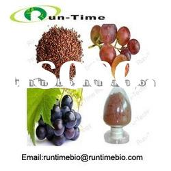 grape skin extract powder for antioxidant