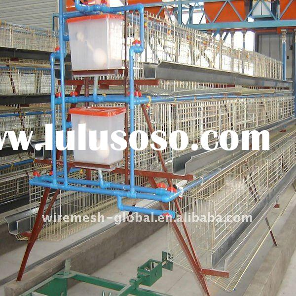 Poultry House Design Philippines