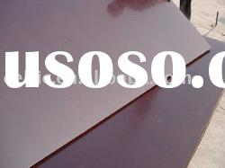 Brown film faced plywood/construction board/shuttering plywood from China