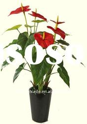 sell artificial Anthurium flower bonsai