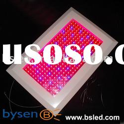 3color/Tri-spectrum led grow lights 300w hydroponics