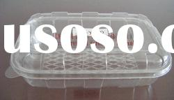 plastic food container/disposable container