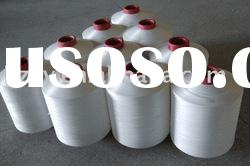 raw white polyester dty