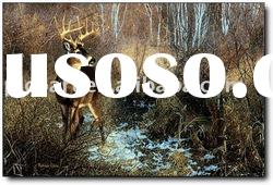 deer oil paintings handpainted animal oil painting on canvas with high quality at good price