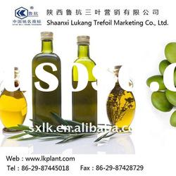 home olive oil press--chinese factory (GMP.HACCP)