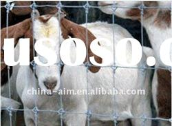 Anping simple animal cage wire mesh for cattle