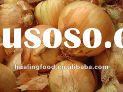 2012 YunNan NEW FRESH YELLOW ONIONS!!!