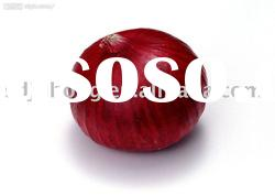red shallots small onion