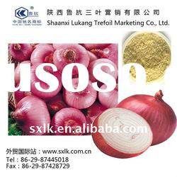 chinese pure liquid onion extract best price(GMP.HACCP)
