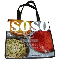 2011 New high quality PP woven shopping bag