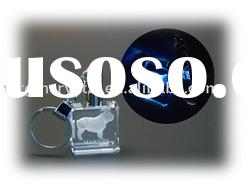 Nice 3d laser crystal key ring/promotional gifts