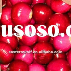 Red onion 2011 in 10kg carton package. 2011 crop.MOQ:1X40FCL