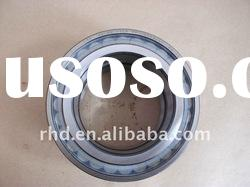 Germany Full complement Cylindrical roller bearing SL045016pp