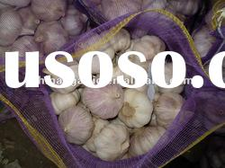 2011 Fresh Chinese Red Garlic (Good Quality and Low Price )