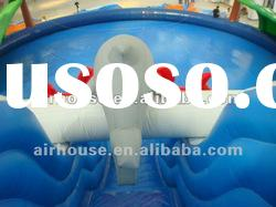 Amusing inflatable water playground(swimming pool and slide)