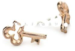 Fashion Jewellery, Bing Bang Tiny Rose Gold Key Stud Earrings
