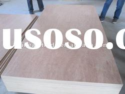 high quality reasonable price bintangor plywood for singapore market