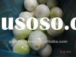 shandong yellow onions fresh