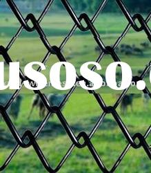 PVC coated& electro galvanized Chain Link Fence(manufacturer))
