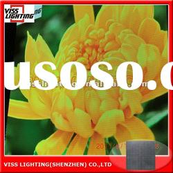 Super thin and light weight full color HD LED display P4/6/8