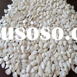 high quality snow white pumpkin seeds A grade