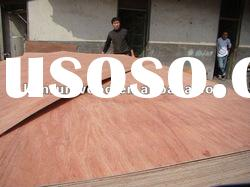 indonesia plywood with cheap price for sale from linyi factory,China