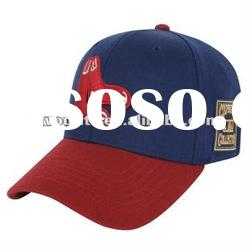 sport cap /baseball cap with embroidery