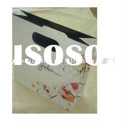 2012 Newly fashion gift shopping paper bag