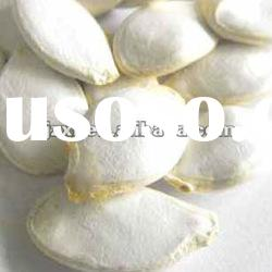 2011 crop Chinese snow white pumpkin seeds in shell (9.5cm)