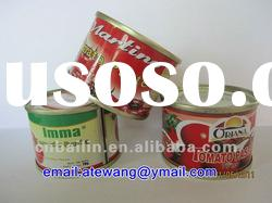 70g canned tomato paste, hot sale!!!